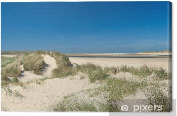 Sand dunes at the coast Canvas Print - Themes