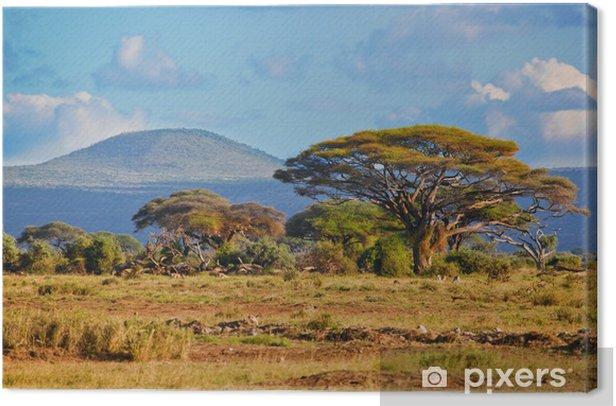 Savanna landscape in Africa, Amboseli, Kenya Canvas Print - Themes