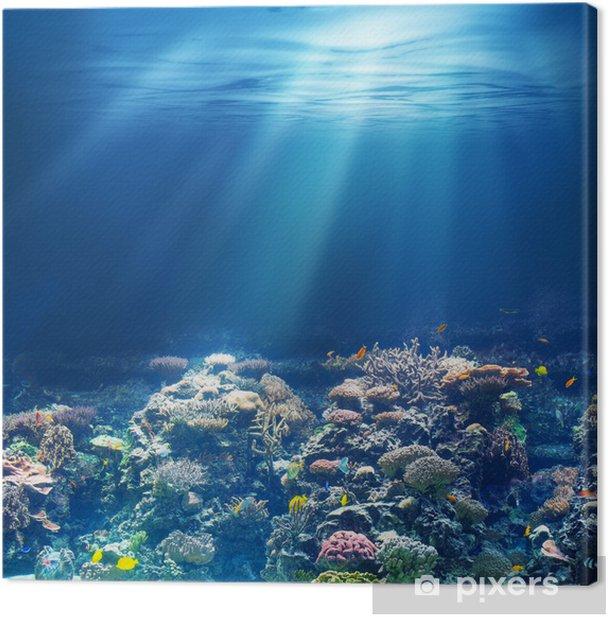 Sea or ocean underwater coral reef Canvas Print - Coral reef