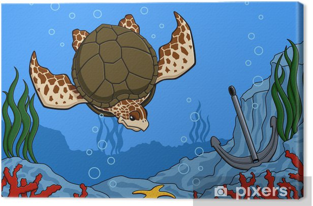 Sea turtle Canvas Print - Other Other