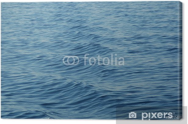 Sea Canvas Print - Water