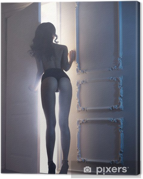 Sensual lady in classical interior Canvas Print - Lingerie