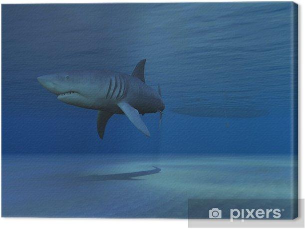 SHARK! Canvas Print - Aquatic and Marine Life