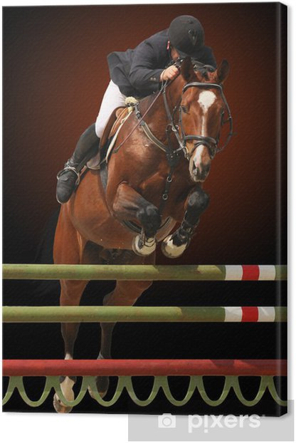 Show jumping Canvas Print - Individual Sports