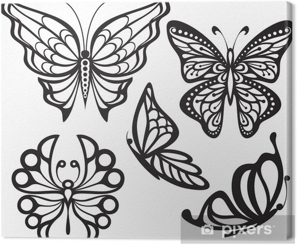 Silhouette butterfly with open wings and delicate Canvas Print - Other Other