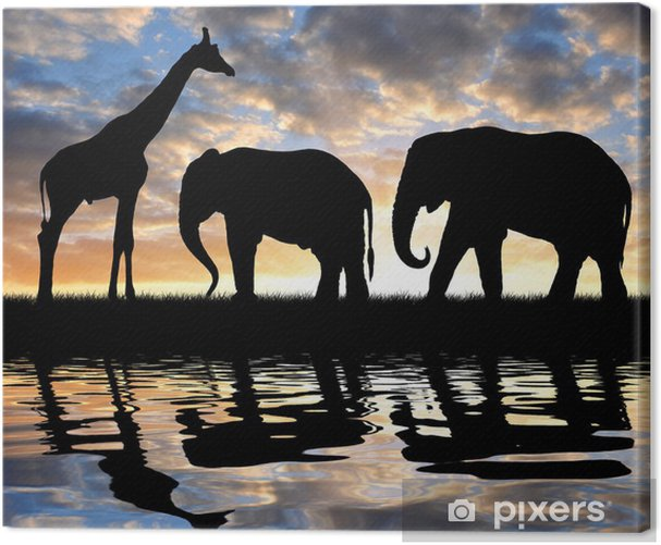 silhouette elephants and giraffe in the sunset Canvas Print - Themes
