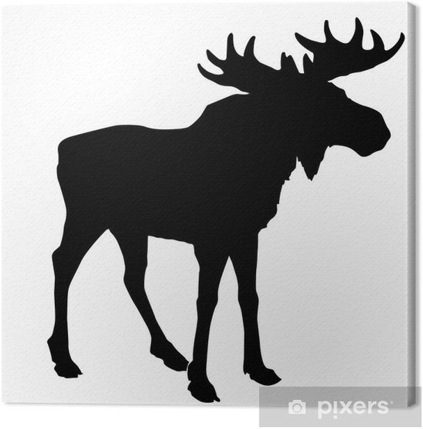 silhouette moose on white background Canvas Print - Wall decals