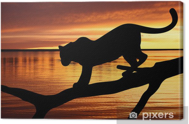 Silhouette of leopard on branch on sunset background Canvas Print - Themes