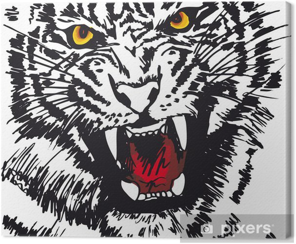 Sketch of white tiger. Vector illustration Canvas Print - Themes