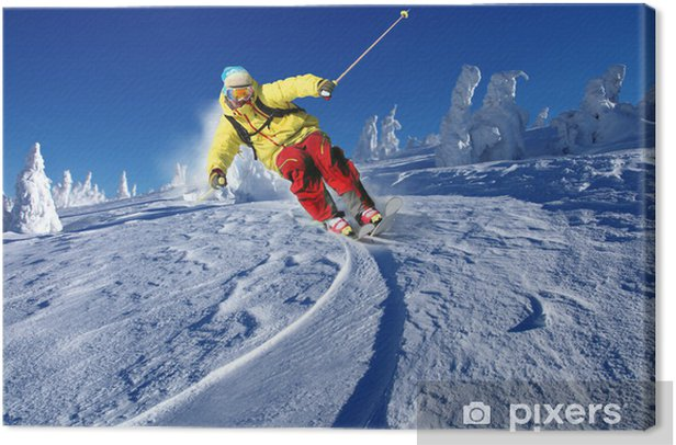 Skier skiing downhill in mountains Canvas Print - Skiing