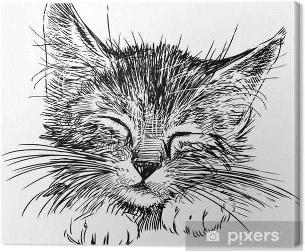sleeping cat Canvas Print - Wall decals