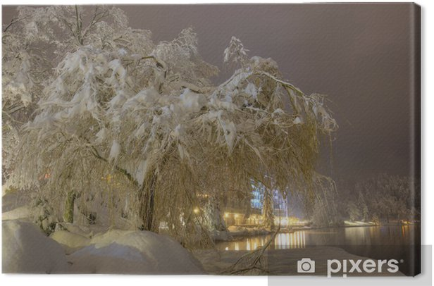 Snowbound Tree On The Bank Of Lake Bled In Winter Snowy Night Canvas Print