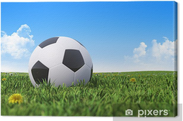 Soccer ball on a green grass field Canvas Print - Signs and Symbols