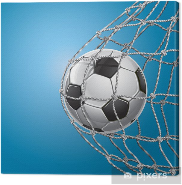 Soccer Goal. A soccer ball in a net. Vector illustration ...