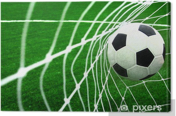 soccer Canvas Print -