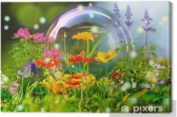 Sommerwiese Canvas Print - Health and Medicine