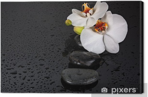 Spa Stone Canvas Print - Flowers