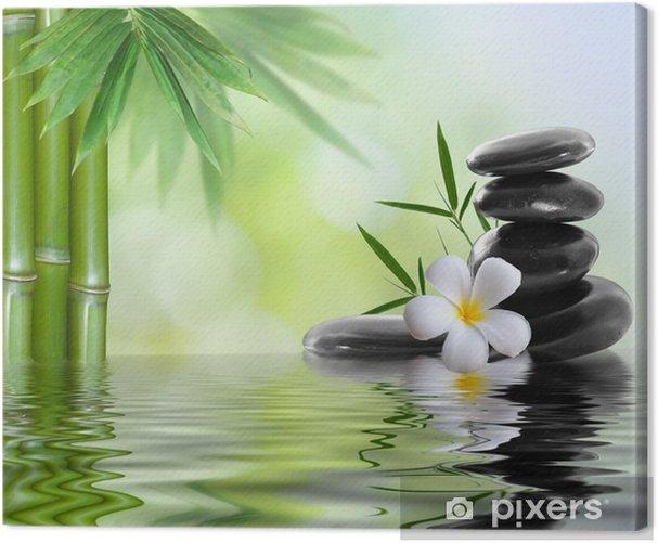 spa stones with frangipani Canvas Print - Themes