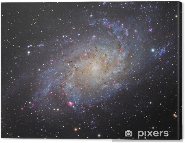 Spiral Galaxy Canvas Print - Universe