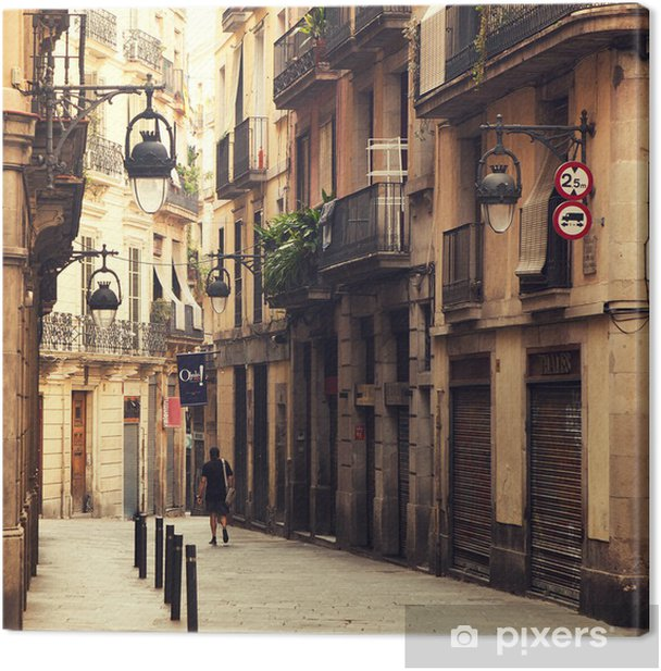 Street in gothic quarter in Barcelona. Canvas Print - Themes