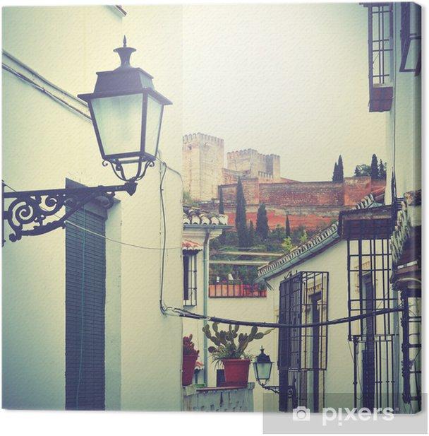 Street in Granada Canvas Print - Spain