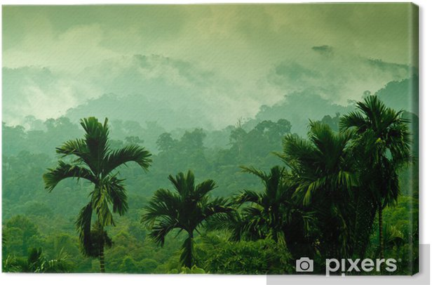 Sumatran mountains Canvas Print - Themes