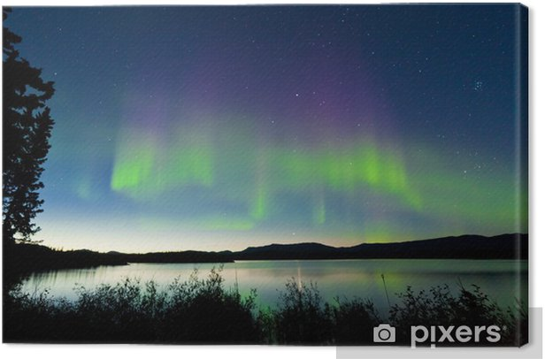 Summer night Northern lights over Lake Laberge Canvas Print - Themes