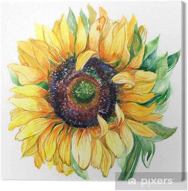 sunflower Canvas Print - Flowers