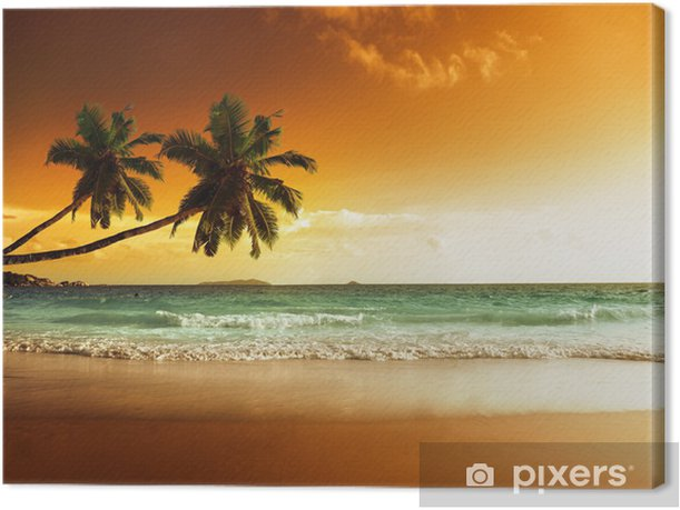 sunset on the beach of caribbean sea Canvas Print -