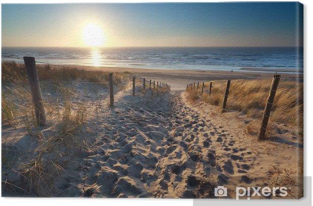 sunshine over path to beach in North sea Canvas Print - Destinations