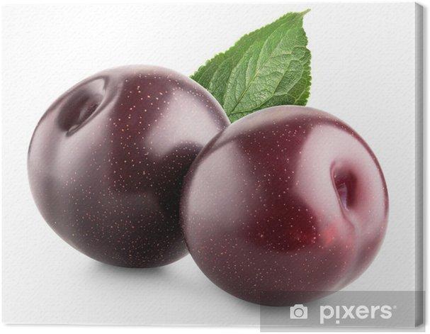 Sweet plums Canvas Print - Fruit