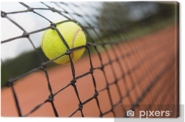 Tennis Ball Bouncing On The Net Canvas Print Pixers We Live To