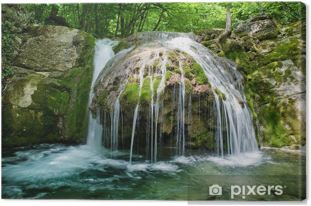 9635ff9e9 The beautiful waterfall in forest, spring, long exposure Canvas Print