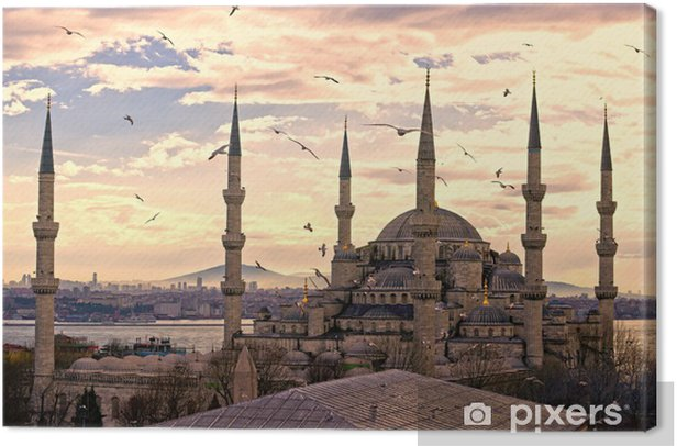 The Blue Mosque, Istanbul, Turkey. Canvas Print - iStaging
