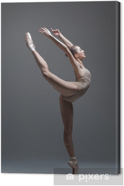 the dancer Canvas Print - Themes