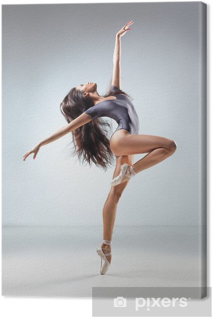the dancer Canvas Print - Themes