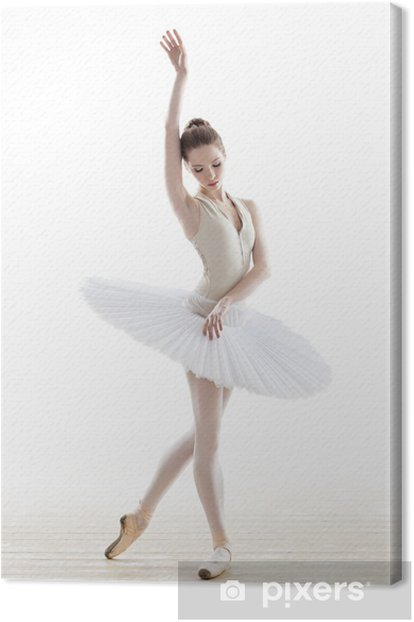 the dancer Canvas Print - Ballet