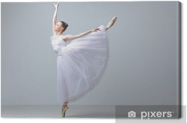 the dancer Canvas Print - Ballet
