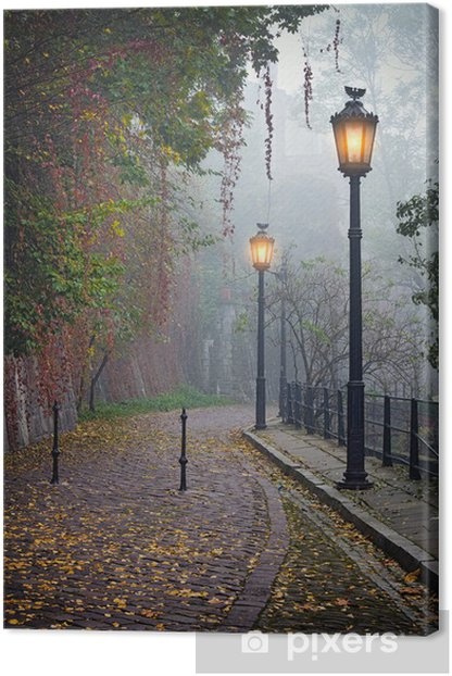 The mysterious alleyway in foggy autumn time with lighted lamps Canvas Print - Themes