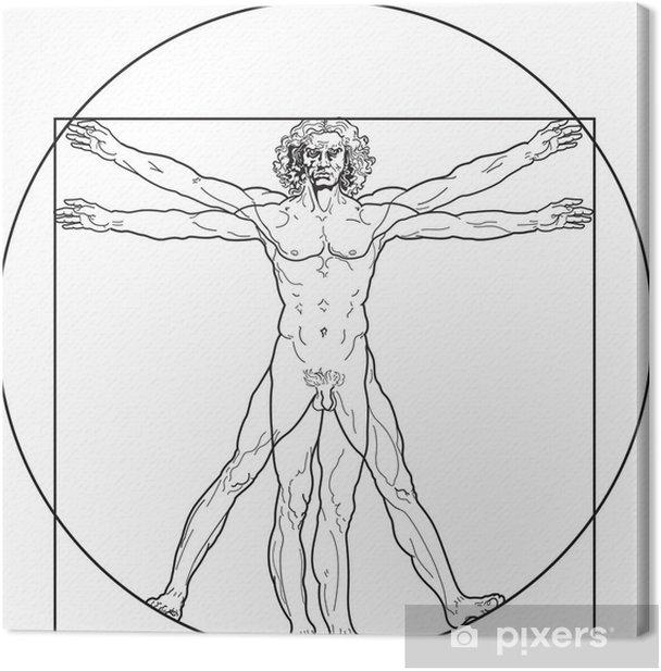 Vitruvian Man Outline