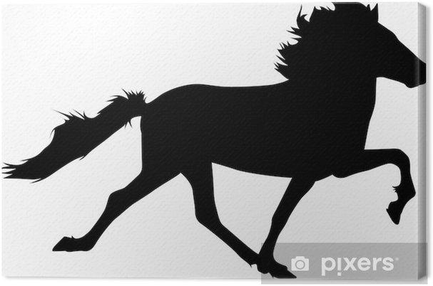 Toelt 07 - IcelandicHorse Canvas Print - Mammals