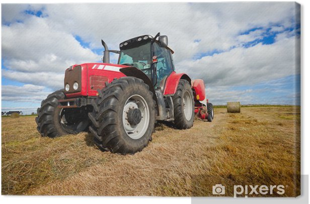 tractor collecting haystack in the field Canvas Print - Themes