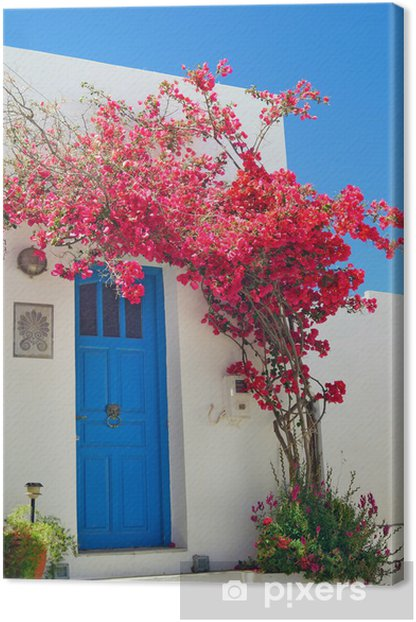 Traditional greek door on Sifnos island, Greece Canvas Print - Themes