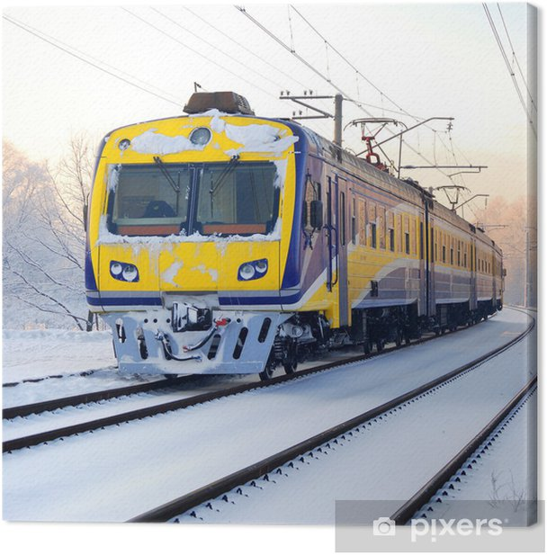 train in winter Canvas Print - Themes