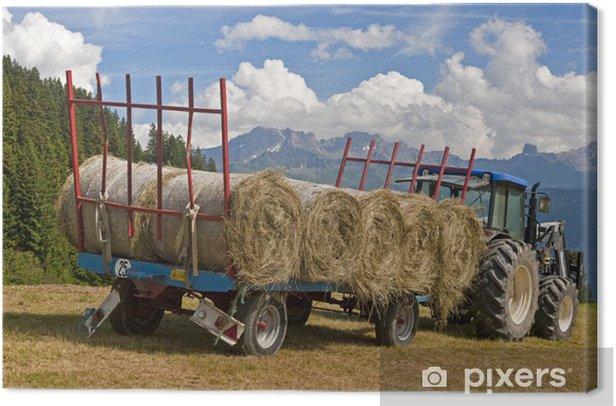 Traktor mit Heuballen Canvas Print - Agriculture