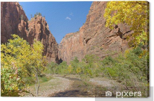 Tranquil Canyon Scene Canvas Print - America
