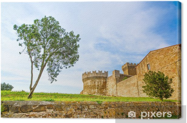 Tree in Populonia medieval village landmark. Tuscany, Italy. Canvas Print - Europe