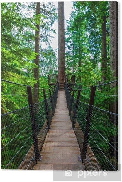 Treetop Suspension Bridge in Capilano Park, British Columbia Canvas Print - The Environment