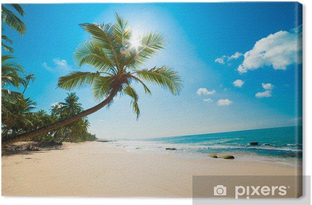 Tropical beach in the sun Canvas Print - Maldives
