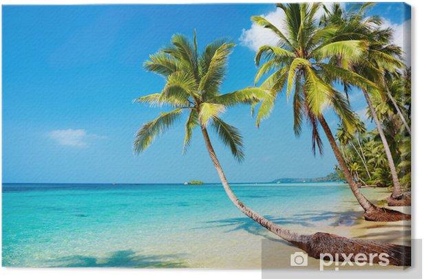 Tropical beach Canvas Print - Destinations